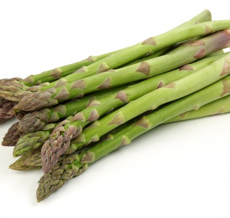Processing Asparagus without Any Breakage or Bending