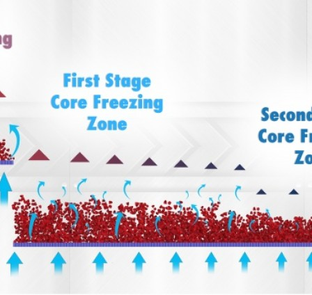 ALL YOU NEED TO KNOW ABOUT FLUIDIZATION IN IQF FREEZING