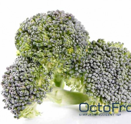 THE STAR OF FROZEN VEGETABLES: IQF BROCCOLI