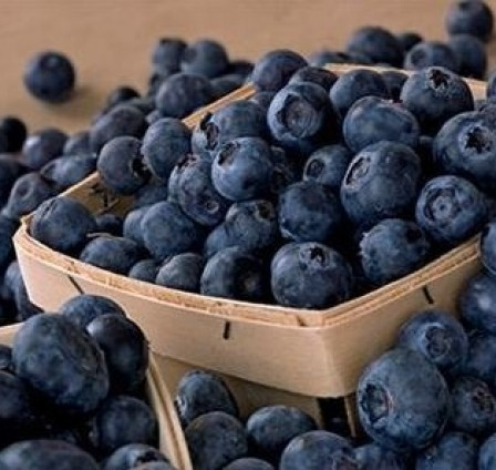 OVERVIEW OF THE WORLD'S FRESH AND FROZEN BLUEBERRY MARKET